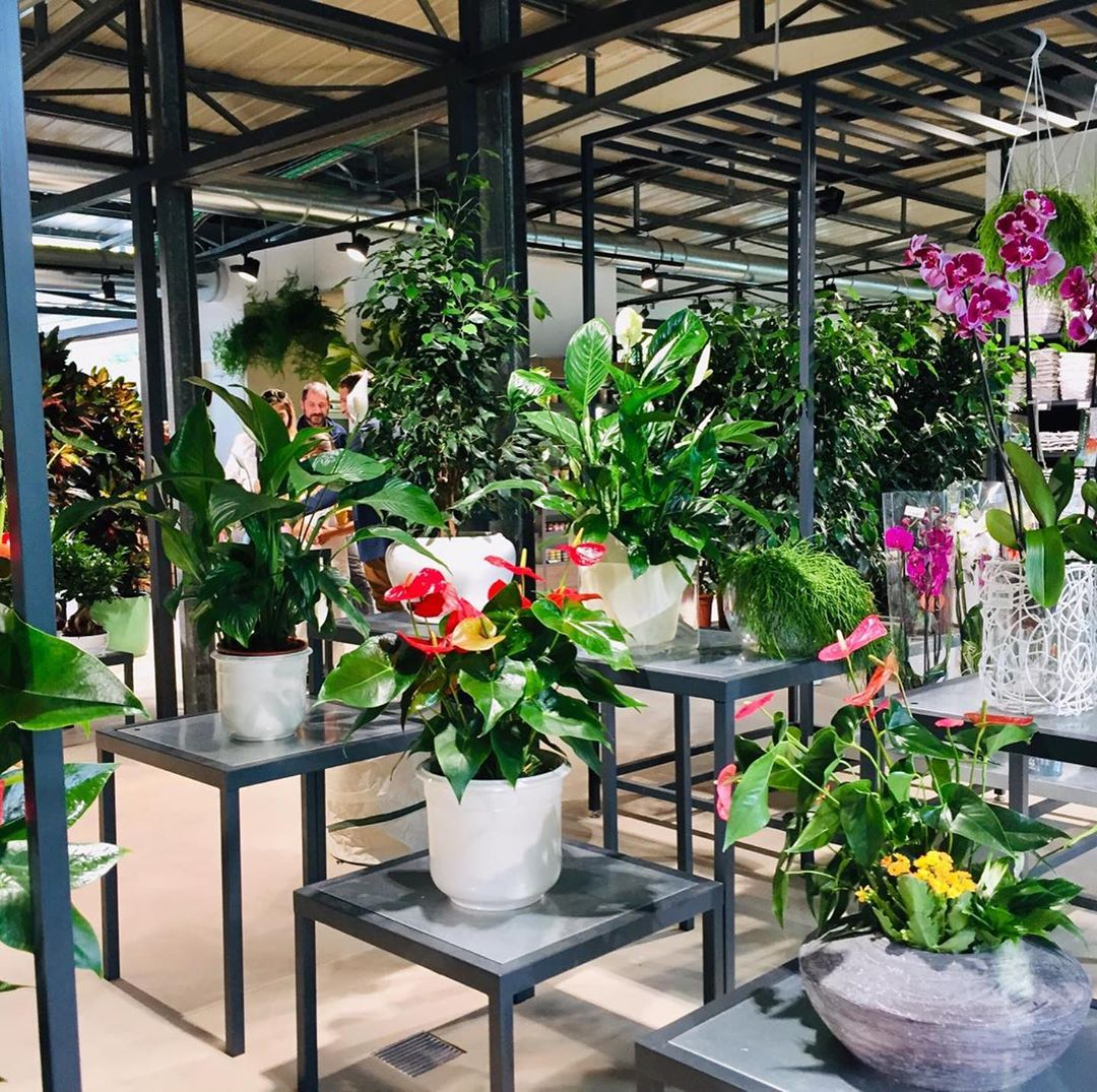 Horticultural negozio
